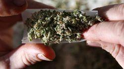 Marijuana: Santé Canada surveillera la publicité et la