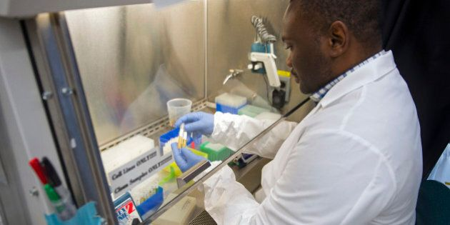 In this photo taken Feb. 4, 2015, biologist Olivier Mbaya works with serum samples from healthy volunteer...