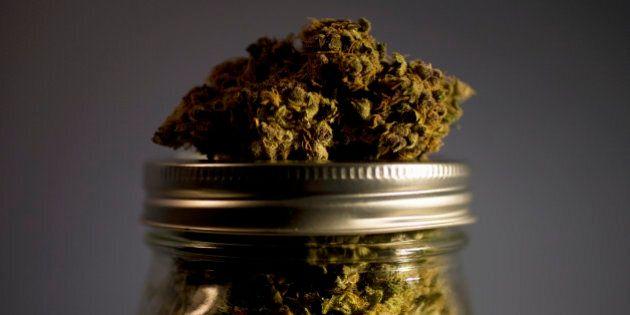 Rappel de marijuana trop puissante par Santé