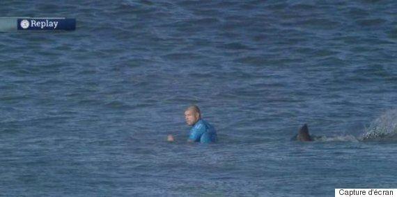Afrique du Sud: un surfeur attaqué par un requin, devant les caméras