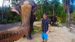 Pris par un éléphant avec la caméra d'un Vancouvérois, cet égoportrait devient