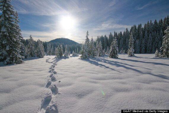 7 façons dont la neige nous rend plus