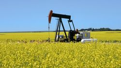 Les ressources naturelles du Québec: on les exploite? Et