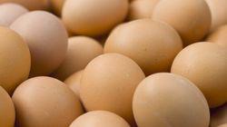Mettre tous ses œufs dans le même