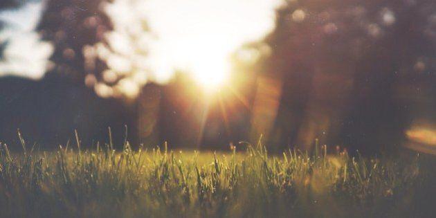 Profitez du printemps pour mettre le nez dehors avec les Journées de la