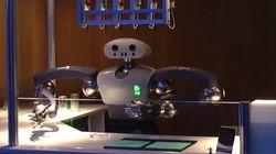 Rencontrez Hollie, le robot