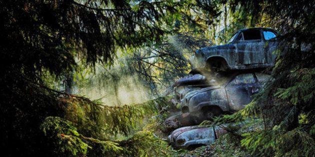Des PHOTOS magiques de voitures