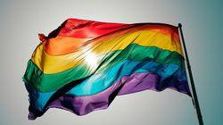 Arrestation de militants pour les droits des homosexuels en Russie