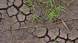 Le faux dilemme : croissance contre