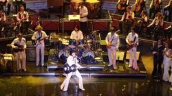 Elvis Expérience : Martin Fontaine performera à Las