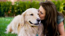 9 signes que votre chien vous connaît mieux que