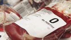Les homosexuels abstinents pourront peut-être donner du sang aux