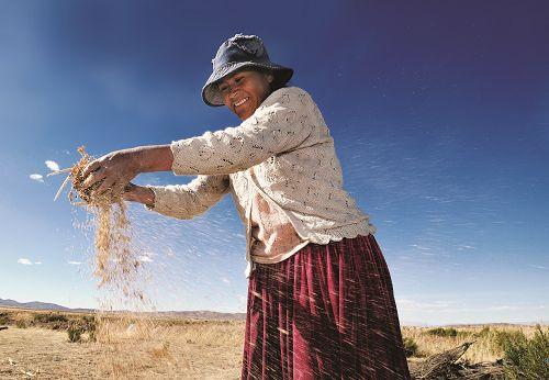 La privatisation des semences: un enjeu