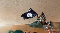 Le manuel du jihadiste individuel appliqué à la