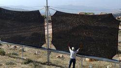 Au Maroc, on «moissonne» le brouillard pour fournir de l'eau aux villageois