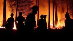 Colombie-Britannique: La foudre a allumé 60 des 67 incendies de