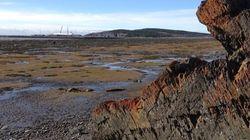 Forages au large de Cacouna : Québec donne le feu vert à
