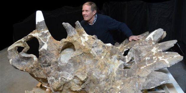 « Le garçon de l'enfer » une nouvelle espèce de dinosaure découverte au