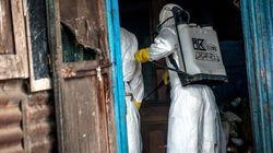 Ebola: l'OMS prévoit une explosion des cas en Afrique de l'Ouest en