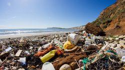 88% de la surface des océans polluée par du
