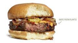 Ce hamburger végétarien a tout d'un vrai cheeseburger, même le côté
