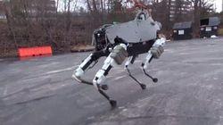 Découvrez Spot, le robot qui ne tombe jamais