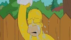Ice Bucket Challenge : Homer Simpson relève le défi