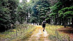 Sur le chemin du Compostelle québécois: L'Avenir à Drummondville