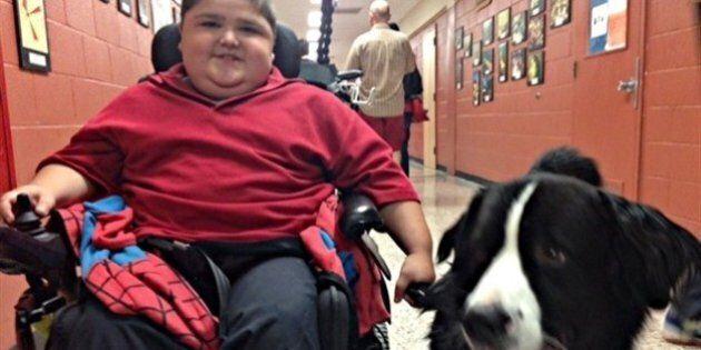 Un chien Mira à l'école secondaire Val-Mauricie de