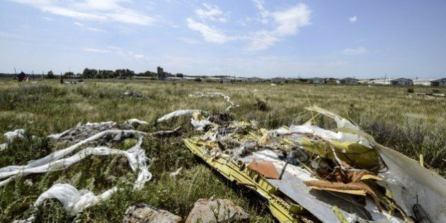 A picture shows debris at the crash site of the Malaysia Airlines Flight MH17 near the village of Hrabove...