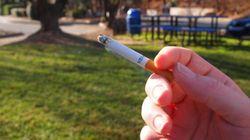 Des espaces non-fumeurs dans les parcs de