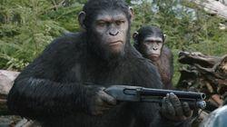 «La planète des singes : l'Affrontement» - Fictif mais pas