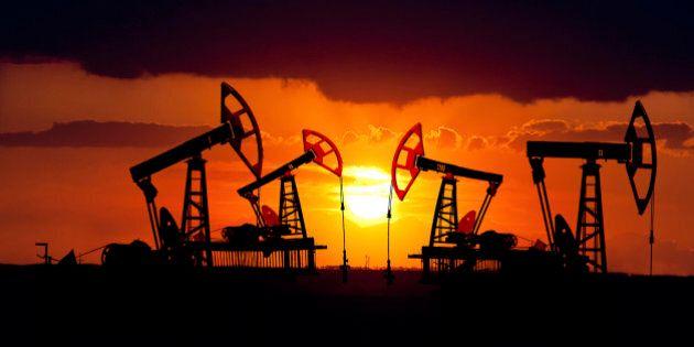 Fuite de pétrole : des effets largement inconnus, selon une ébauche