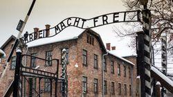 70e anniversaire de la libération d'Auschwitz: la mémoire postmoderne de la