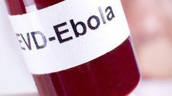 Ebola: vaccins bloqués au