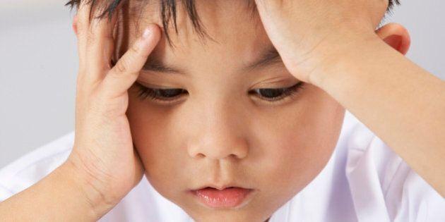 Aide aux devoirs: Québec enverra un vérificateur à la Commission scolaire des