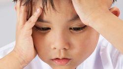 Coupures dans l'aide aux devoirs: un vérificateur envoyé à la Commission scolaire des