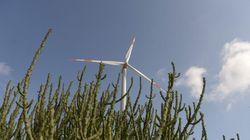 L'éolien: une façon saine de générer de