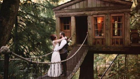 Ce mariage dans une cabane dans les arbres sort tout droit d'un rêve d'enfant