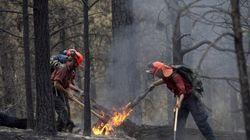 De la fumée des incendies de forêt de l'Ouest canadien perceptible du