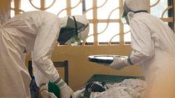 L'épidémie d'Ebola pourrait être «stabilisée» fin