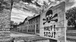 Auschwitz: visite de l'horreur en