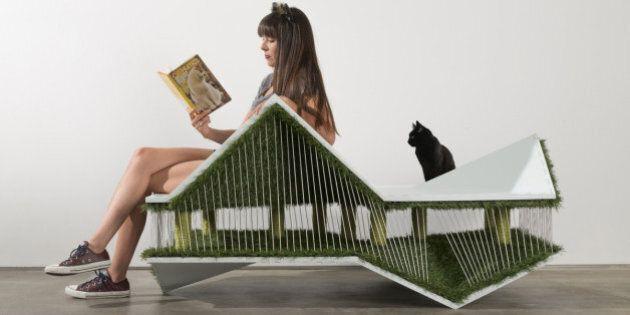 15 maisons d'architecte... pour chats