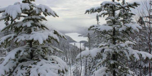Célébrer l'hiver sur la côte ouest de Terre-Neuve