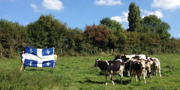 Mission «Lever le vent»: le drapeau québécois visite l'Écosse et la