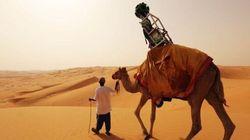 Google Street View: des chameaux pour photographier le désert