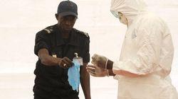Une partie du mystère du virus d'Ebola est