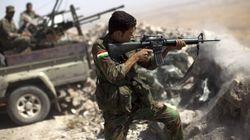 Entre 20 000 et 31 500 membres de l'EI en Irak et en