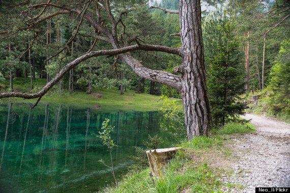 Grüner See ou l'incroyable parc en Autriche qui se transforme en lac