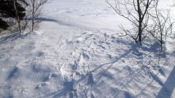 La fonte de la neige à Charlottetown en